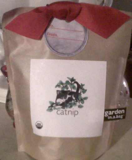 Catnippresent